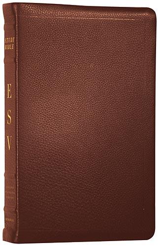 ESV Calfskin Bible